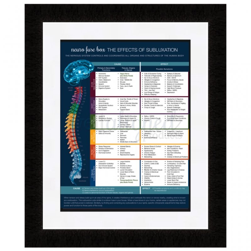 neuro fuse handouts new well aligned products chiropractic meric chart poster fuse neuro nervous system patient education modern spine brain