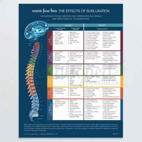 chiropractic meric chart poster fuse neuro nervous system patient education modern spine brain